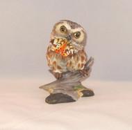 Saw-Whet Owl 200-38