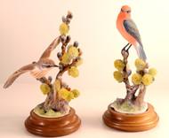 Dorothy Doughty Vermilion Flycatchers (Pair) RW3657C & RW3658C