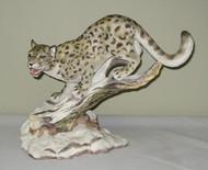Snow Leopard 40433