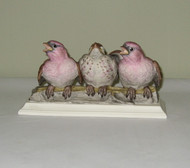 Fledgling Purple Finches 450
