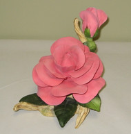 Pink Peace Rose 10146