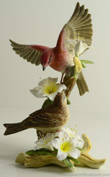 Boehm Purple Finch With Azaleas Hallmark 10191