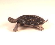 Spotted Turtle (40372)