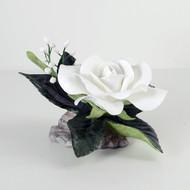 Bridal Rose (F249)