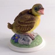 Baby Goldfinch 448
