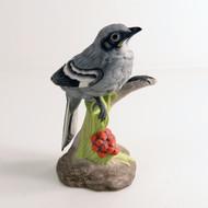 Baby Mockingbird 400-56
