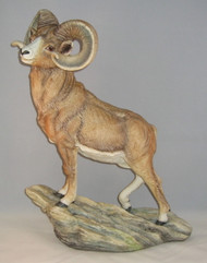 Big Horn Sheep 10065