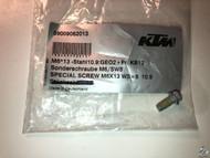 59009062013 Brake Disc Bolt ALL KTM, Husqvarna SPECIAL SCREW M6X13 WS=8 10.9
