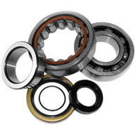 Crank Bearings & Seal Kit KTM SX 65 2009>