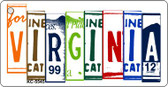 Virginia License Plate Art Metal Novelty Mini License Plate Key Chain