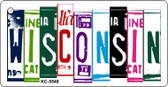 Wisconsin License Plate Art Metal Novelty Mini License Plate Key Chain