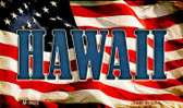 Hawaii Wholesale Novelty Metal Magnet