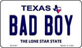 Bad Boy Texas Background Wholesale Novelty Metal Magnet M-9391