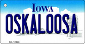 Oskaloosa Iowa State License Plate Novelty Wholesale Key Chain