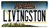 Livingston Montana State License Plate Novelty Wholesale Magnet M-11098