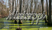 Mississippi Swamp Wholesale Magnet M-11610