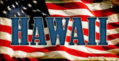 Hawaii US Flag Wholesale Novelty Bicycle Plate BP-3622