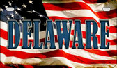 Delaware US Flag Wholesale Novelty Motorcycle Plate MP-3619