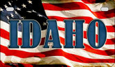 Idaho US Flag Wholesale Novelty Motorcycle Plate MP-3623