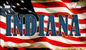 Indiana US Flag Wholesale Novelty Motorcycle Plate MP-3625