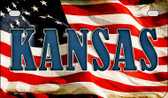 Kansas US Flag Wholesale Novelty Motorcycle Plate MP-3627