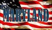 Maryland US Flag Wholesale Novelty Motorcycle Plate MP-3631