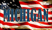 Michigan US Flag Wholesale Novelty Motorcycle Plate MP-3633