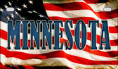 Minnesota US Flag Wholesale Novelty Motorcycle Plate MP-3634