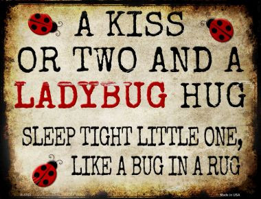 A Kiss and A Ladybug Hug Wholesale Metal Novelty Parking Sign P-1753