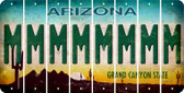 Arizona M Cut License Plate Strips (Set of 8) LPS-AZ1-013