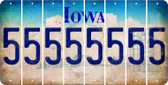 Iowa 5 Cut License Plate Strips (Set of 8) LPS-IA1-032