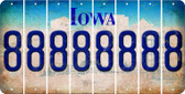 Iowa 8 Cut License Plate Strips (Set of 8) LPS-IA1-035