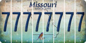 Missouri 7 Cut License Plate Strips (Set of 8) LPS-MO1-034