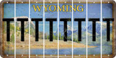 Wyoming T Cut License Plate Strips (Set of 8) LPS-WY1-020