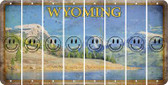 Wyoming SMILEY FACE Cut License Plate Strips (Set of 8) LPS-WY1-089