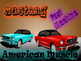 American Muscle Mustang Wholesale Metal Novelty Parking Sign
