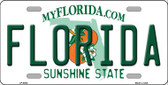 Florida Novelty Wholesale Metal License Plate LP-6005