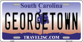 Georgetown South Carolina Novelty Wholesale Metal License Plate LP-6302