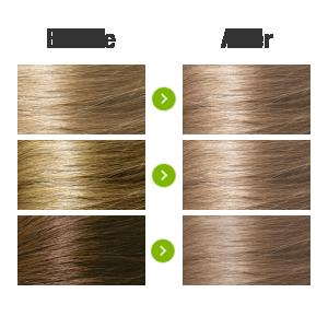 Light Ash Blonde 8.1 Transformation