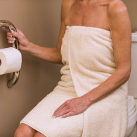 TOILET ROLL HOLDER AND GRAB BAR BY INVISIA | BRUSHED STAINLESS | 500 LB CAPACITY | INV-WTRH-BS