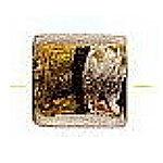 glasschineseg-s-copfoilflatsq.jpg