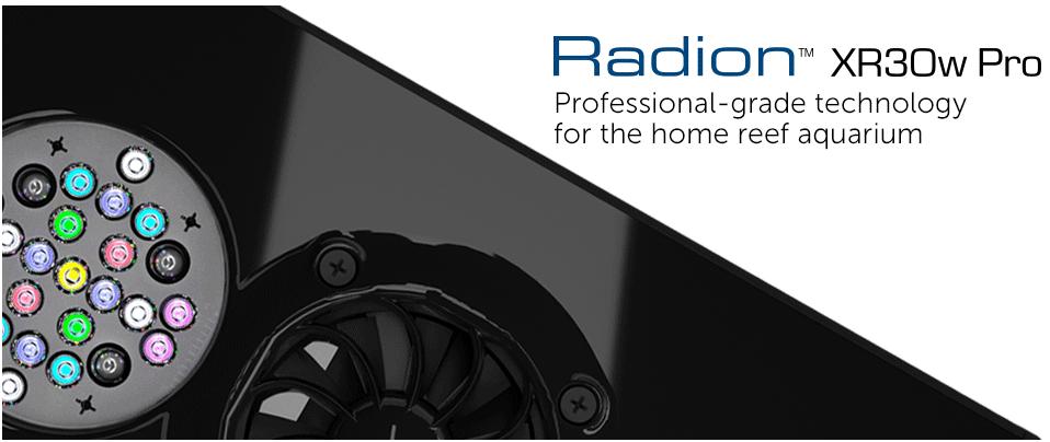 radion-header-pro.png