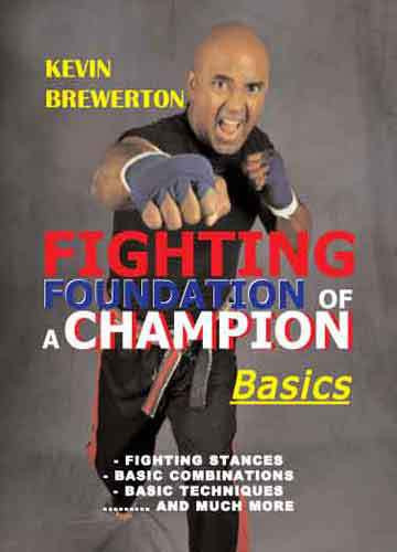 Fighting Foundation of a Champion- Basics (Video Download)