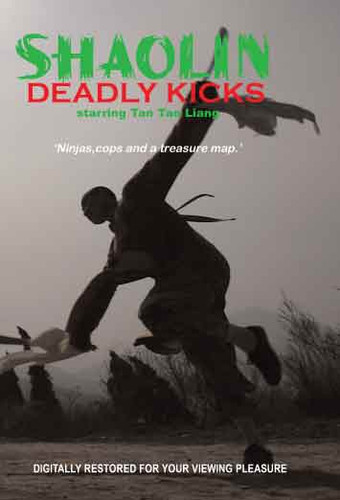 Shaolin Deadly Kicks (Download)