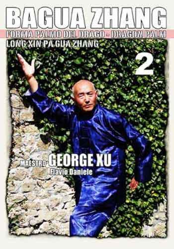Bagua Zhang by George Xu - Dragon Palm - Vol.2