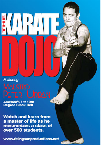 The Karate Dojo (Part #1 The Punch)