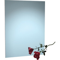 ASI Frameless Stainless Steel Mirror with Masonite Backing