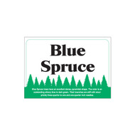 Species Sign - Blue Spruce (JB-SP-1)