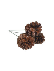 """1.5"""" 3 Pine Cone Pick - Natural Lacquer (WS-PC3N)"""