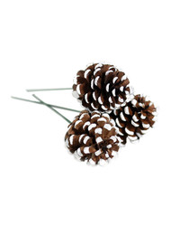 "1.5"" 3 Pine Cone Pick - White (WS-PC3W)"